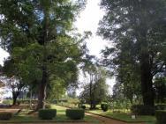La Résidence Sociale d´Antsirabe - zahrada/park