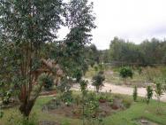Grace Lodge Andasibe - zahrada s bungalovy