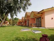 přízemní bungalovy s terasou