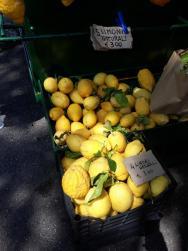 citróny poloostrov Sirmione