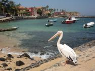 Ostrov Gorée - přístav